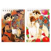 Купить блокноты для рисования Shuiko Kano Art