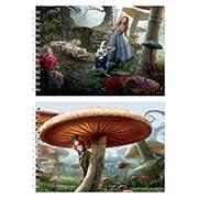 Купить альбомы для рисования Alice in Wonderland