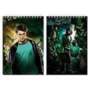 Купить альбомы для рисования Harry Potter