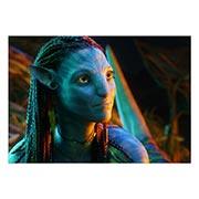 Портретный постер Avatar