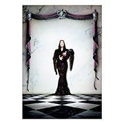 Купить портретные постеры Addams Family