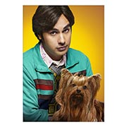 Портретный постер Big Bang Theory