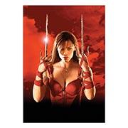 Купить портретные постеры Elektra