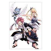 Купить портретные постеры Fairy Tail