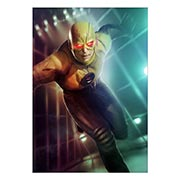 Купить портретные постеры Flash