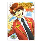 Купить портретные постеры Gakuen Heaven