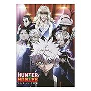Купить портретные постеры Hunter x Hunter