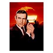 Портретный постер James Bond: You Only Live Twice