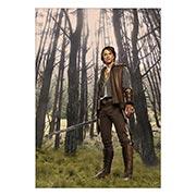 Купить портретные постеры Legend of the Seeker