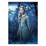 Купить портретные постеры Maleficent