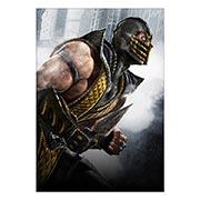Купить портретные постеры Mortal Kombat