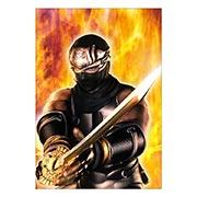 Купить портретные постеры Ninja Gaiden
