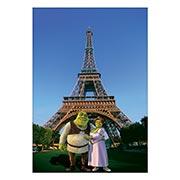 Купить портретные постеры Shrek