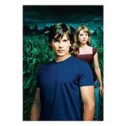 Портретный постер Smallville