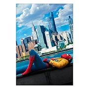Купить портретные постеры Spider-man
