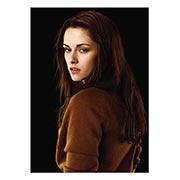 Купить портретные постеры Twilight
