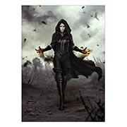 Купить портретные постеры Witcher