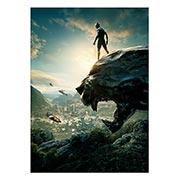 Купить панорамные постеры Black Panther