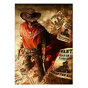 Купить панорамные постеры Call of Juarez