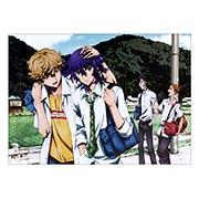 Купить панорамные постеры Shiki