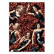 Купить панорамные постеры Desperate Housewives