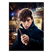 Панорамный постер Fantastic Beasts and Where to Find Them