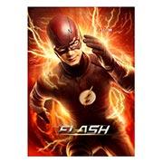 Панорамный постер Flash