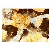 Купить панорамные постеры Takanaga Hinako Art