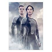 Купить панорамные постеры Hunger Games
