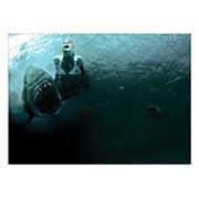 Купить панорамные постеры Jaws