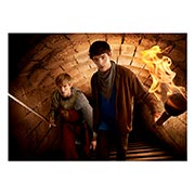 Купить панорамные постеры Merlin