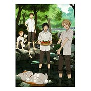 Купить панорамные постеры Natsume Yuujinchou