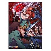 Купить панорамные постеры Rosario + Vampire