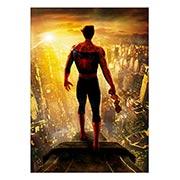Панорамный постер Spider-man