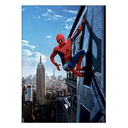 Панорамный постер по аниме/манге Spider-man