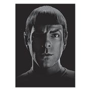 Панорамный постер Star Trek