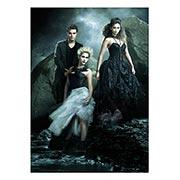 Купить панорамные постеры Vampire Dairies
