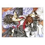 Купить панорамные постеры Vampire Knight