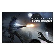 Неформатный постер Tomb Rider. Размер: 100 х 60 см