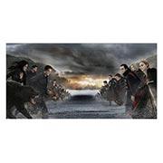 Купить неформатные постеры Twilight