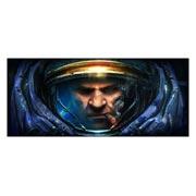 Купить неформатные постеры StarCraft