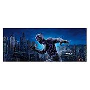 Купить неформатные постеры Black Panther