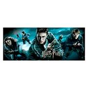 Купить неформатные постеры Harry Potter