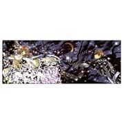 Купить неформатные постеры Tsubasa Reservoir Chronicle
