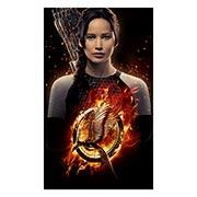 Купить неформатные постеры Hunger Games