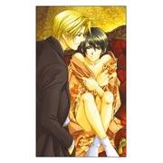 Купить неформатные постеры Higuri You Art