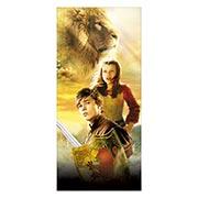 Купить неформатные постеры Chronicles of Narnia