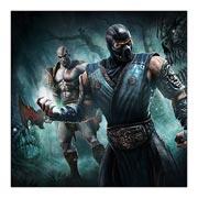 Купить неформатные постеры Mortal Kombat