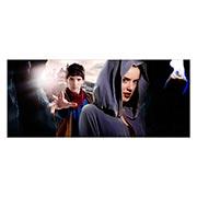 Купить неформатные постеры Merlin