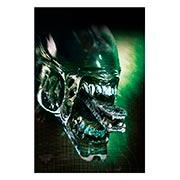 Хардпостер (на твёрдой основе) Alien. Размер: 20 х 30 см